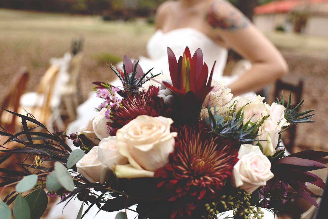 Stacy Reinen Photography - Moss Blog 32